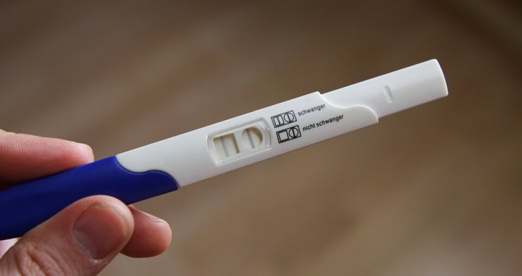 Kućni test za trudnoću
