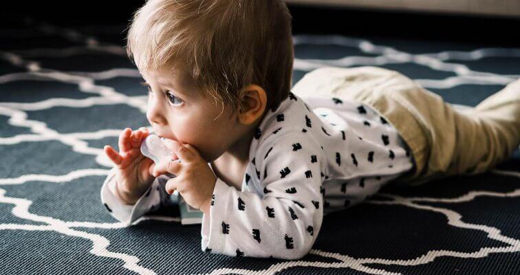 Bjelančevine u hrani za dojenčad i malu djecu